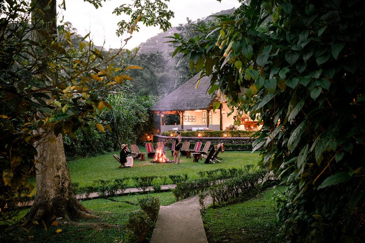 sanctuary-gorilla-forest-camp
