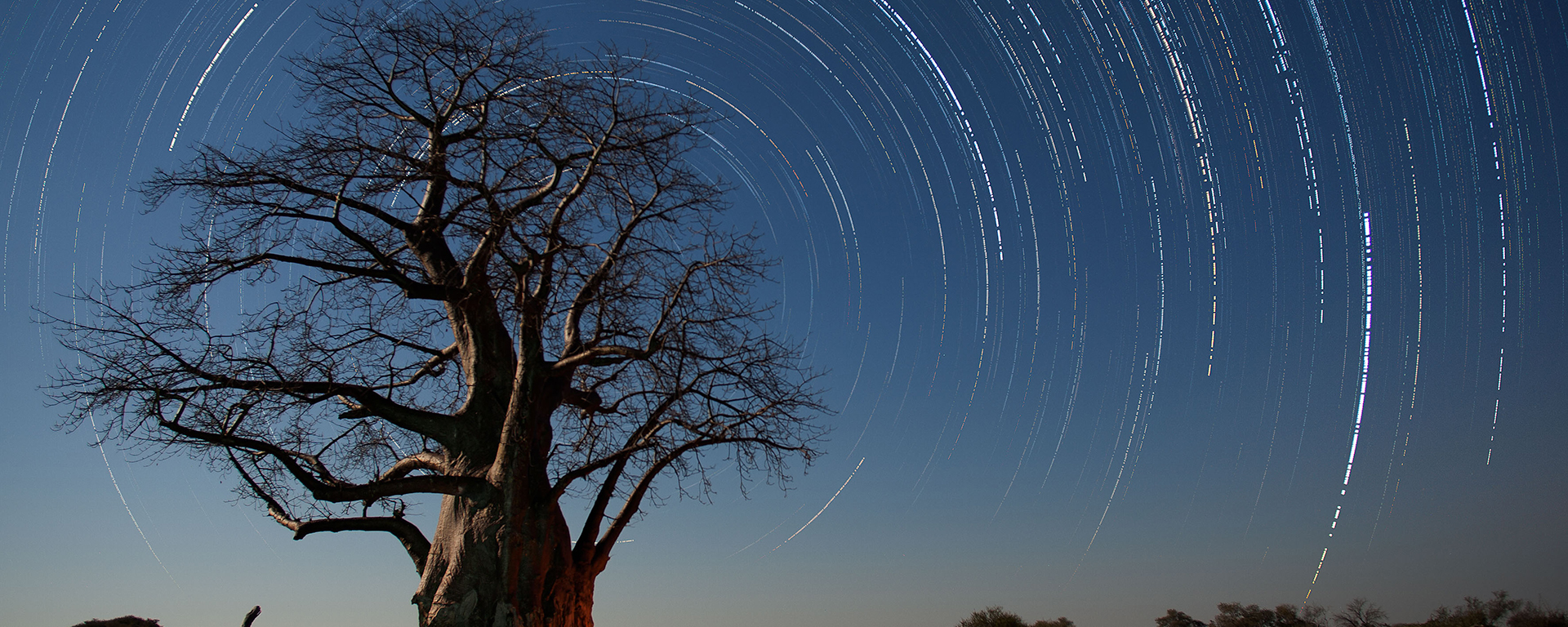 Shooting star trails requires careful planning but the results can be stunning.