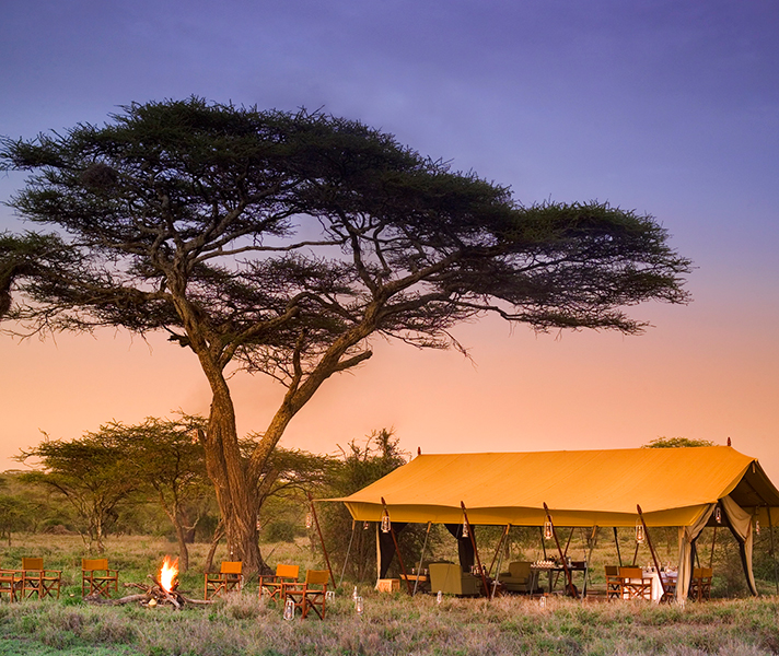 Expect first-class fare on a luxury mobile safari stopping at camps like Serengeti Under Canvas in Tanzania.