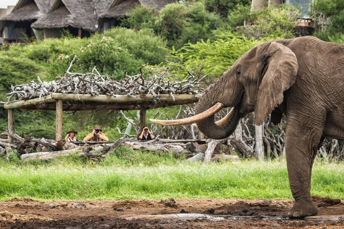 safari-6_ol-donyo-lodge