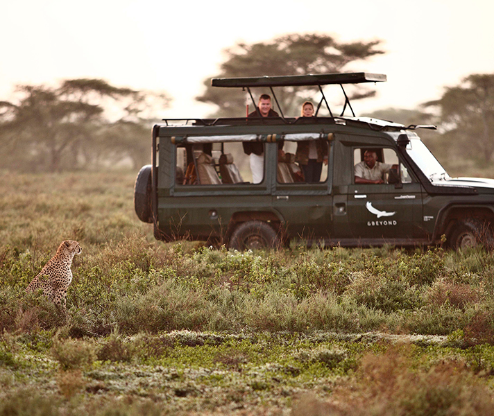 Expect spectacular game viewing & expert guiding that revolves around your special interests at Serengeti Under Canvas.