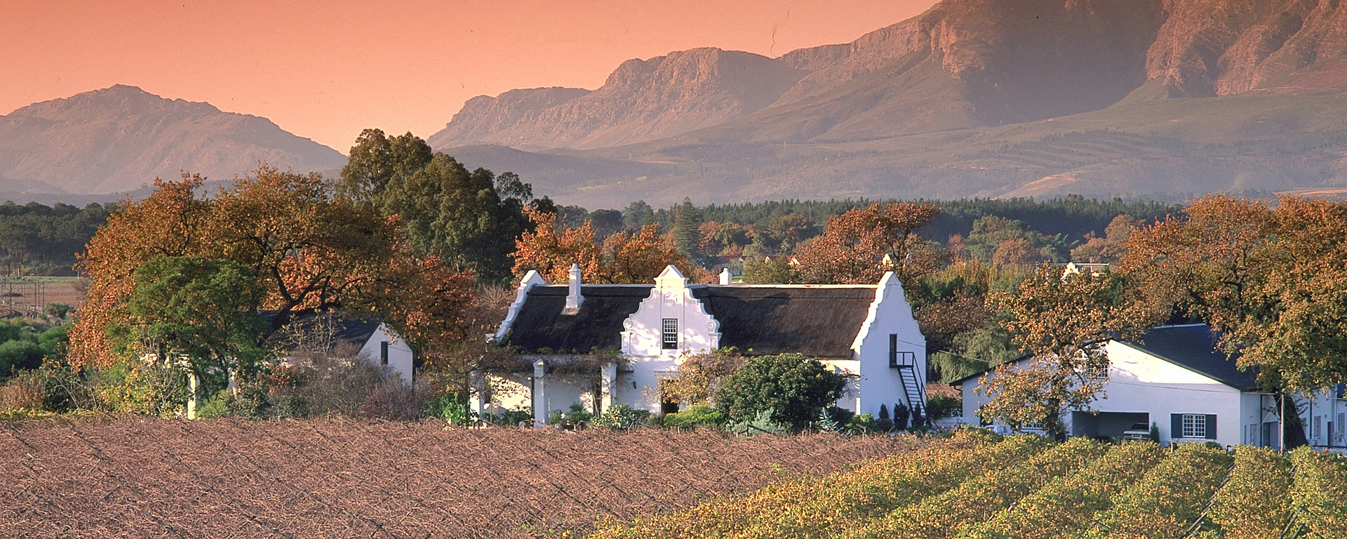 The Cape Winelands combine history, food, great wine & breathtaking scenery about an hour's drive from Cape Town.