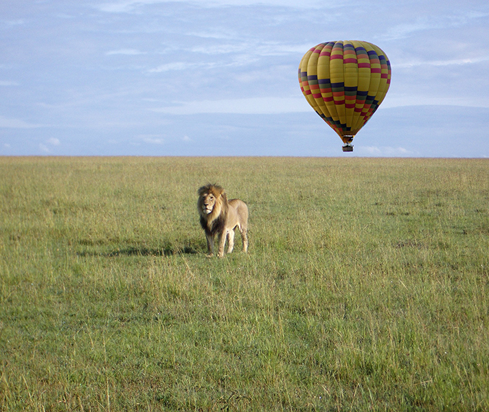 East Africa balloon safaris give you a new perspective over the expansive savannah landscape.