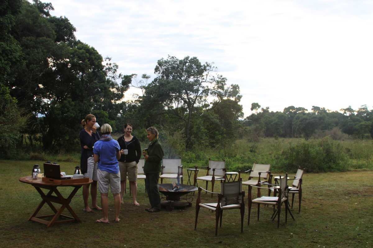 Top 5 Tips for Booking Your African Safari (When, Where to Go & Cost)