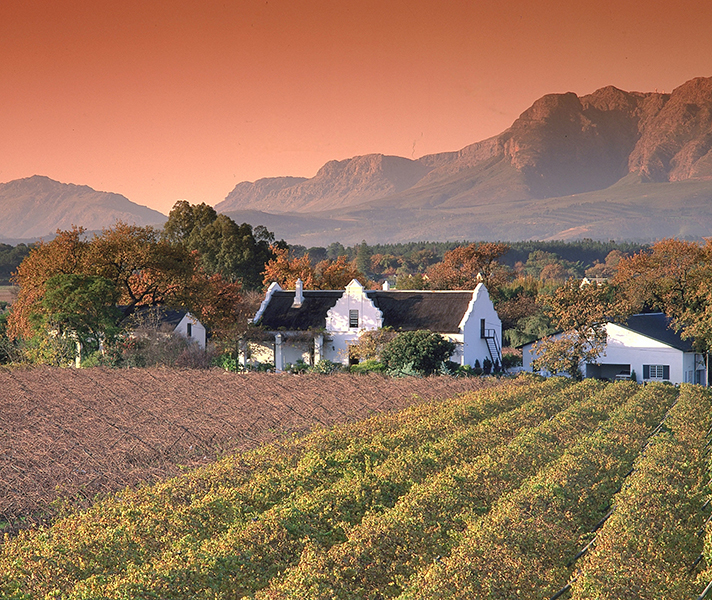 Cape Town has everything from historic wine estates...