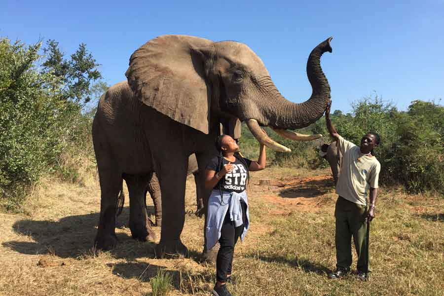 Close and personal with an elephant at Tankiso Elephant Sanctuary in Kenya