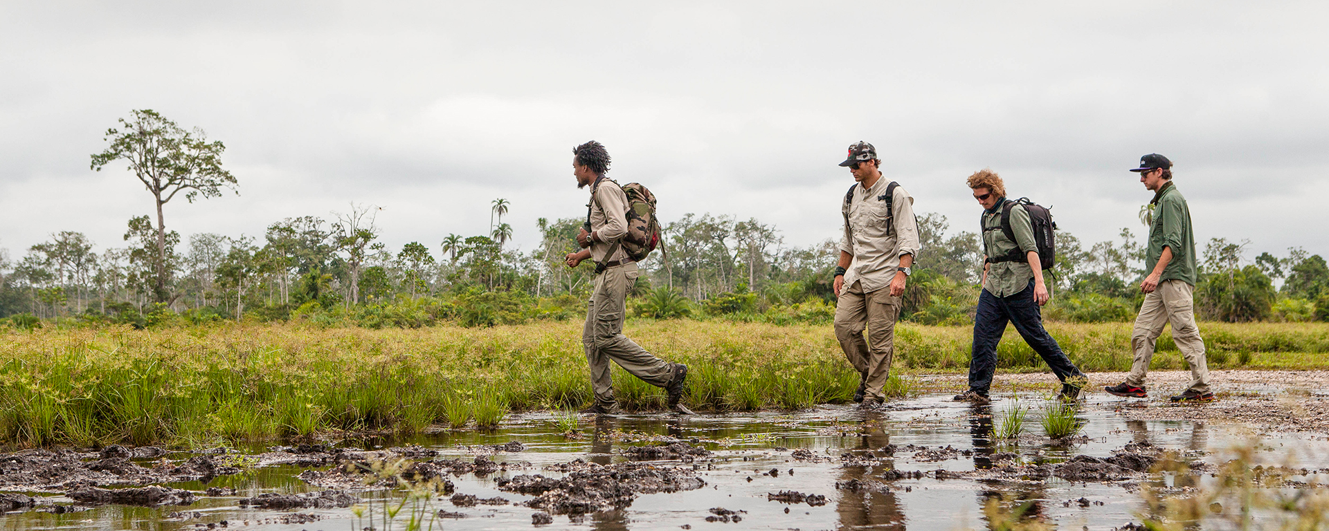 Congo's lush forests & wetlands offer one of the most pristine & undeveloped environments in the world.