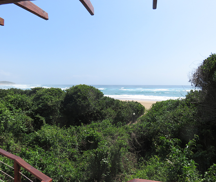 ...tucked away in the indigenous coastal forest, making them really private.