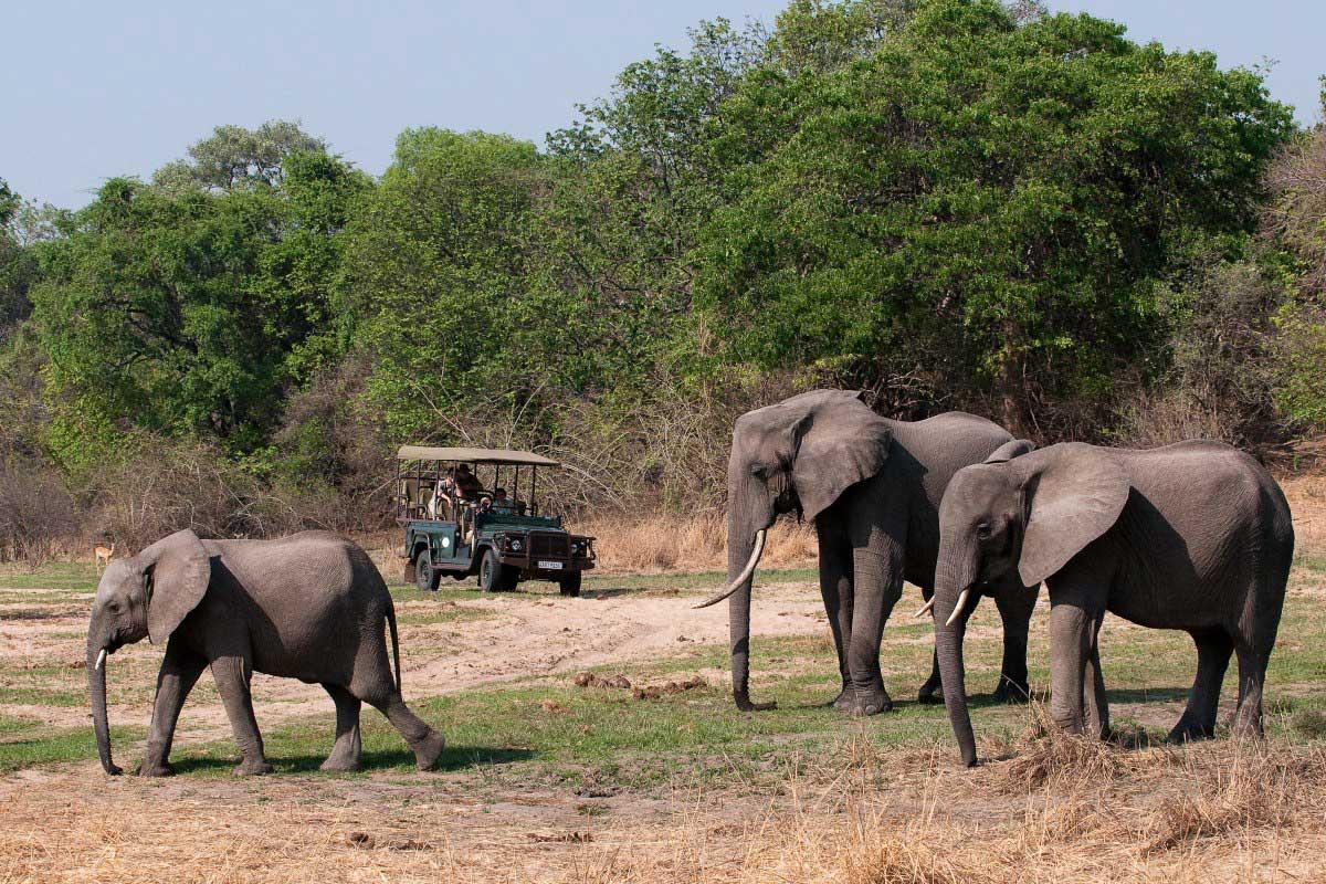 Safari vehicle on a game drive watching 3 elephants at Chamilandu Bush Camp, Zambia