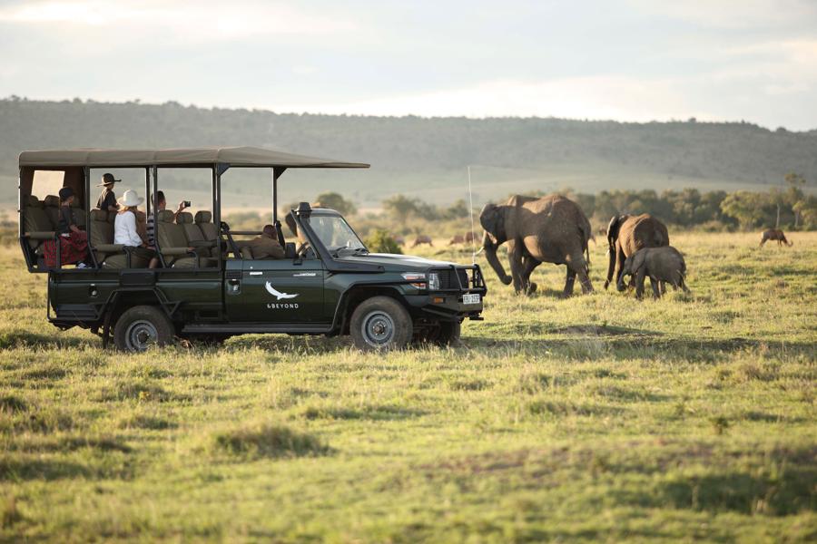 A safari game drive, Kenya   Go2Africa