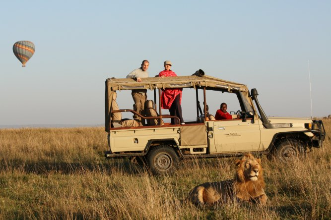 [Infographic]: What happens on safari
