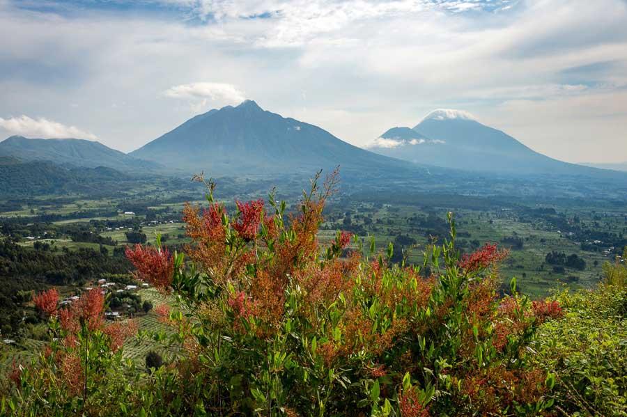 Spectacular view of Rwanda's Volcanoes National Park