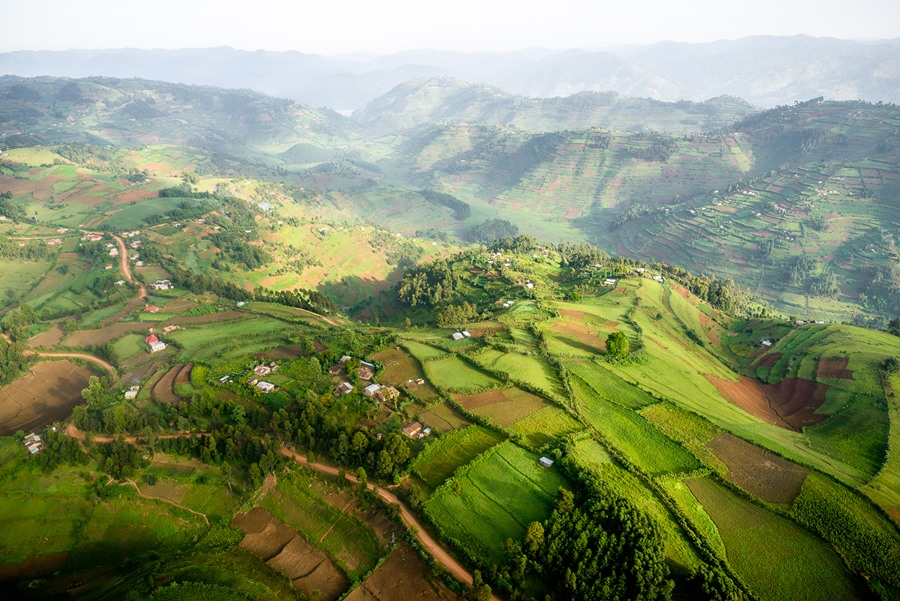 Aerial view on the green, rolling hills of Uganda