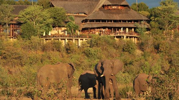 Victoria Falls Lodge