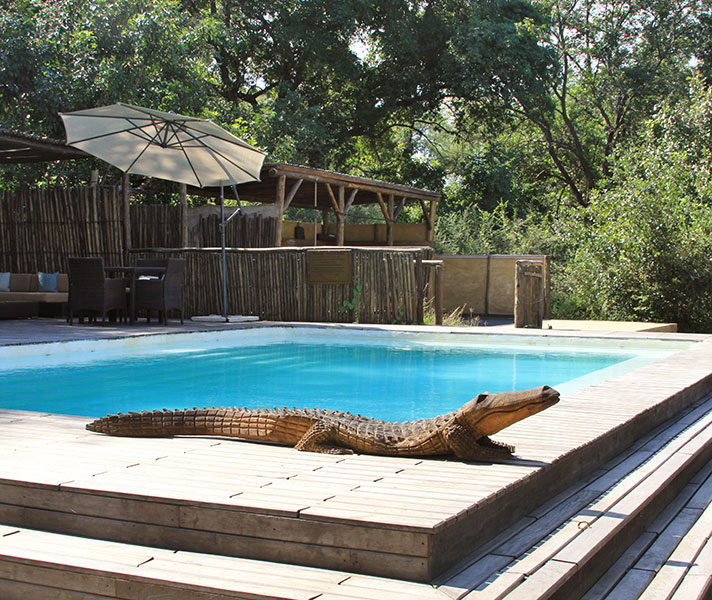Don't worry – it's not a real crocodile that guards the swimming pool at Chiawa. The outdoor gym is next to the pool and both lie alongside the Zambezi River.