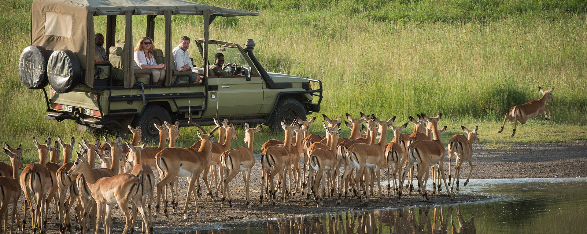 Let your guide know if you need to stop for a rest break on your game drive – he or she will understand and will find a safe spot for you.