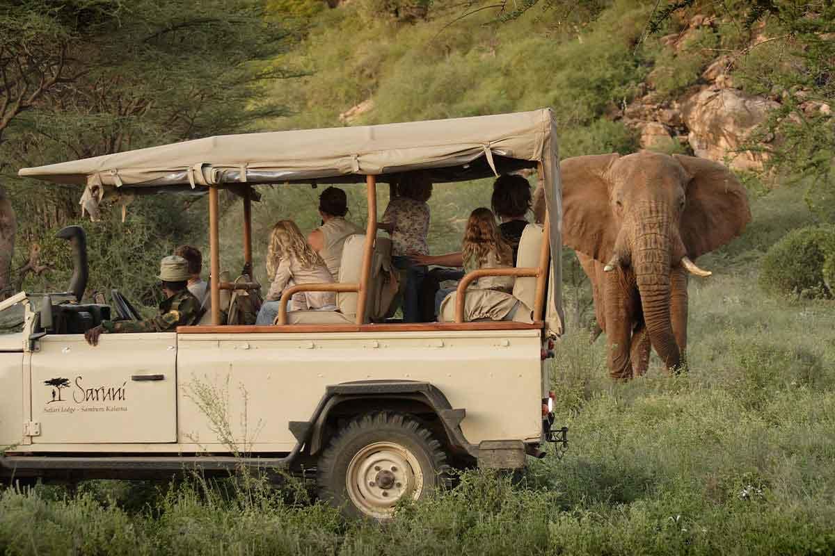 Elephant game viewing with Saruni Samburu Lodge.