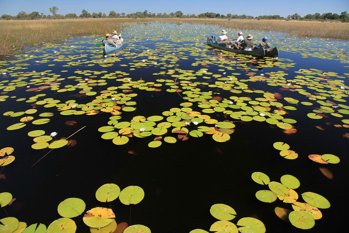 Canoe along the Selinda Spillway, Botswana.