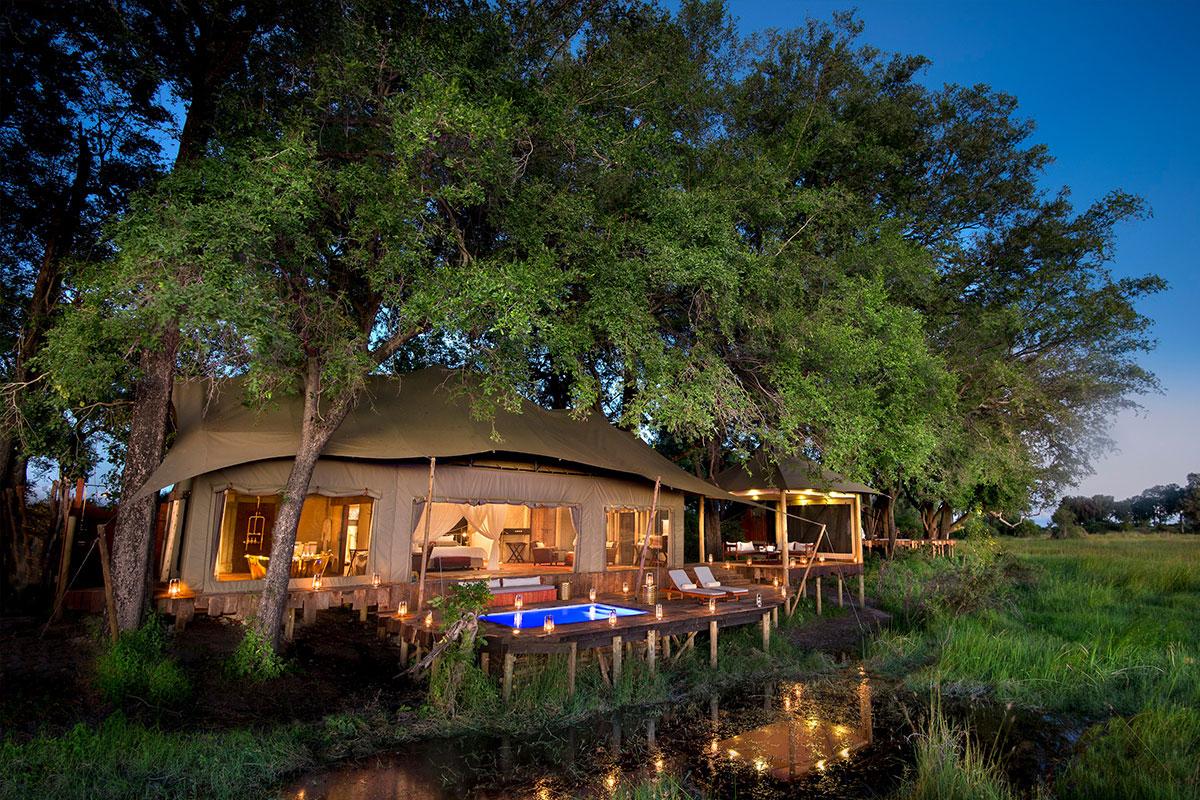 Luxurious tent under trees at the luxurious Duba Plains, Okavango Delta
