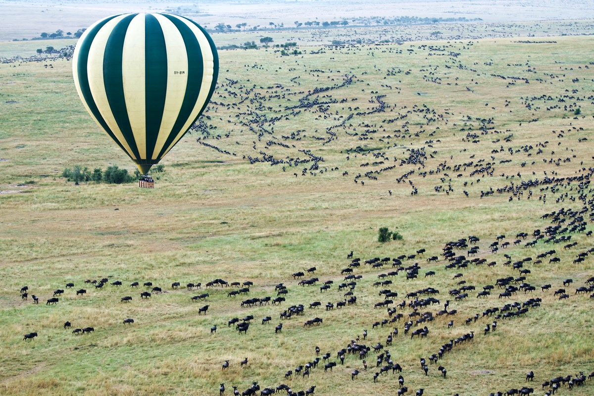 Hot-air balloon safari over the Masai Mara National Reserve