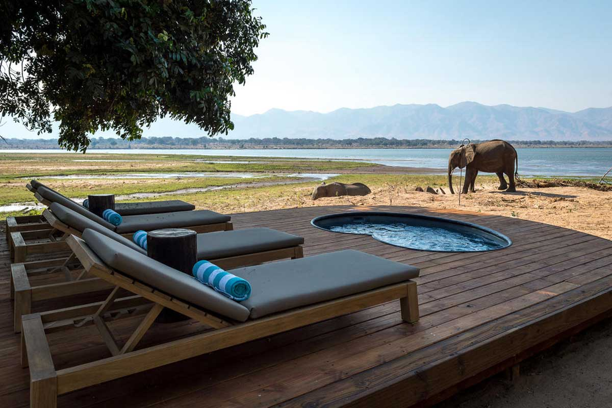 Your private plunge pool view of elephants and the Zambezi River at Little Ruckomech.