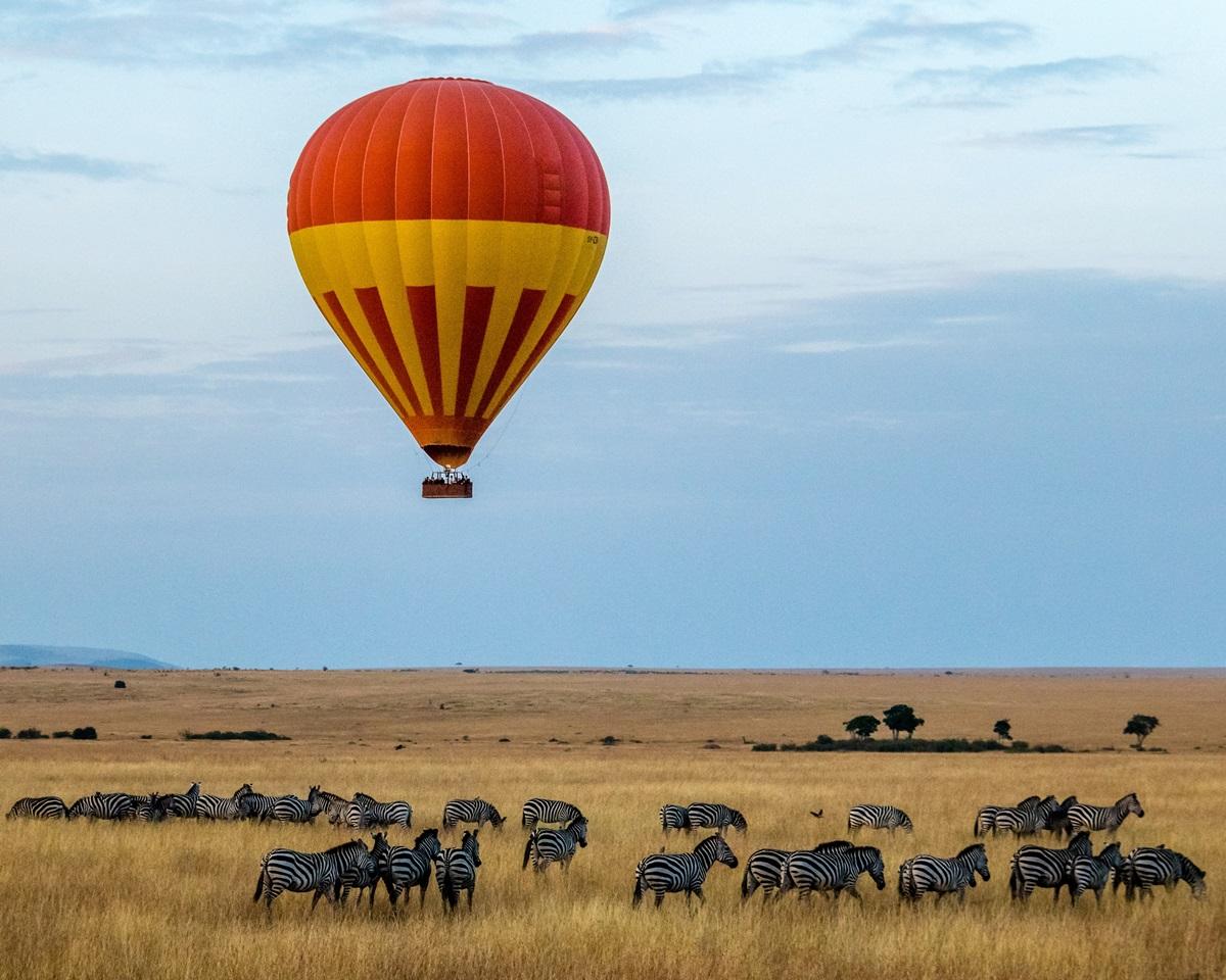 Hot-air balloon ride over herd of zebra grazing in the Masai Mara | Kenya Safari | Go2Africa