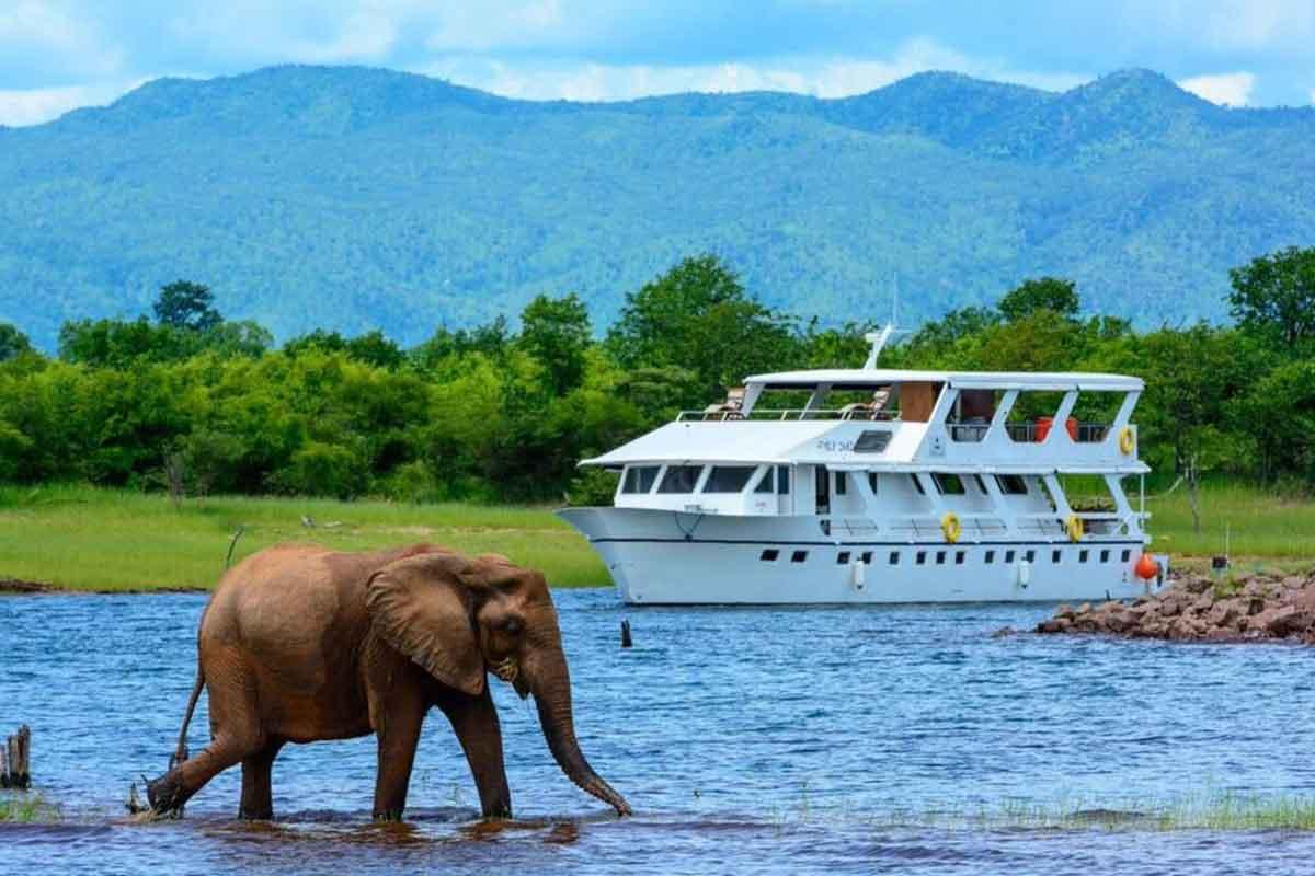 Head on a family holiday to family through Zimbabwe Falls, Hwange and Kariba.