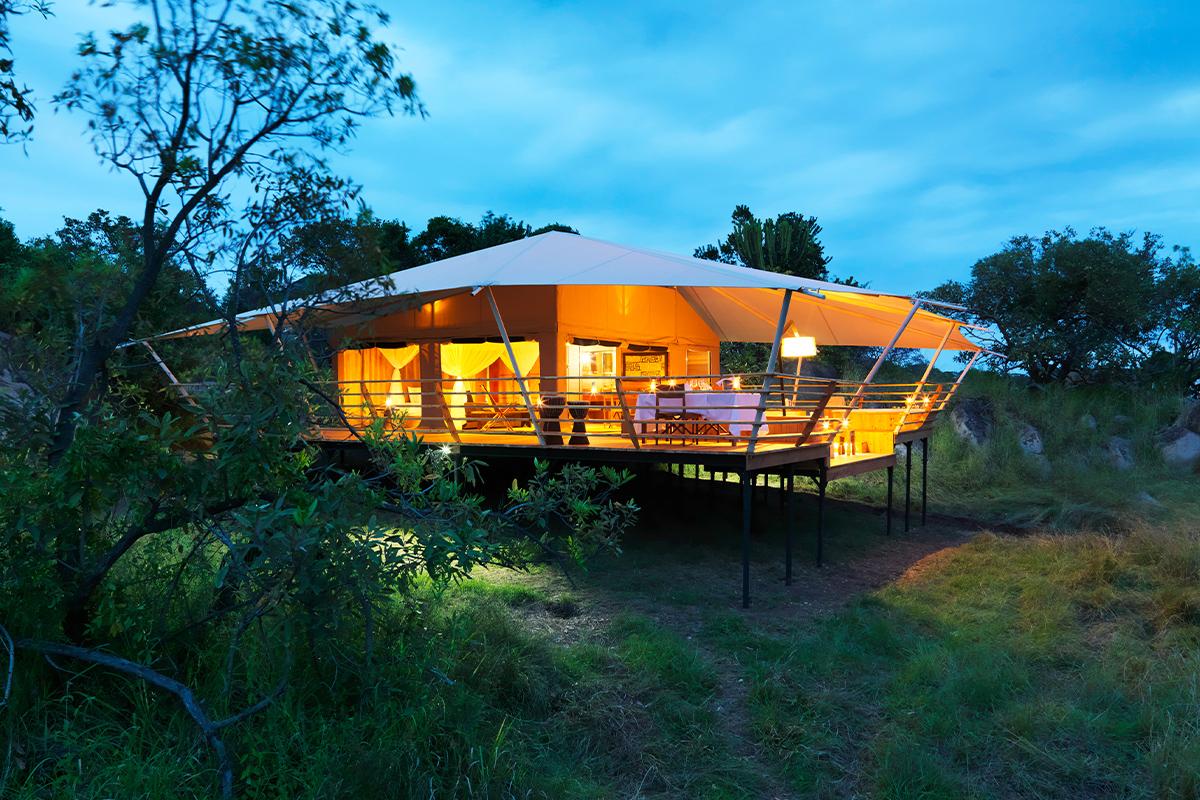 Serengeti-Bushtops