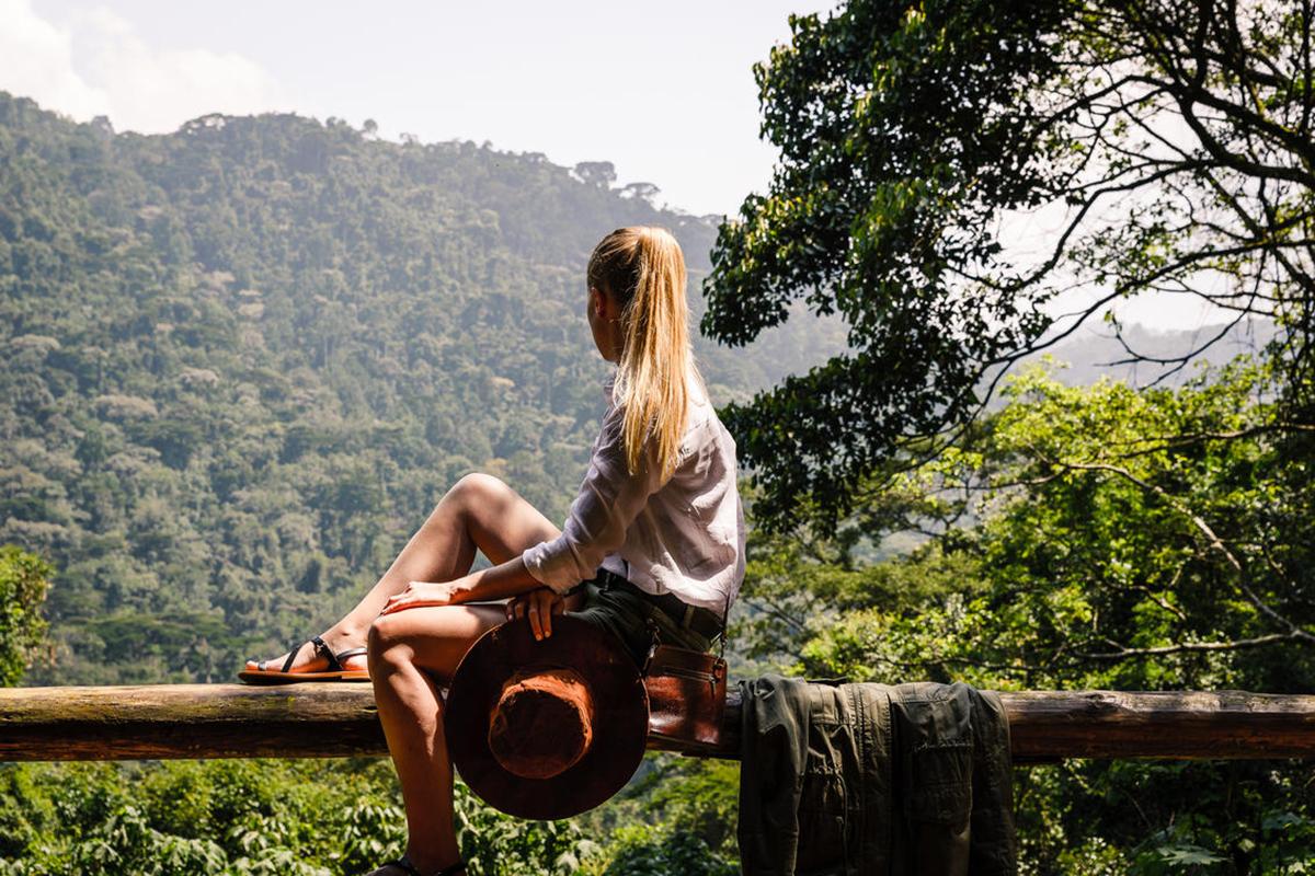 tour-8_sanctuary-gorilla-forest1