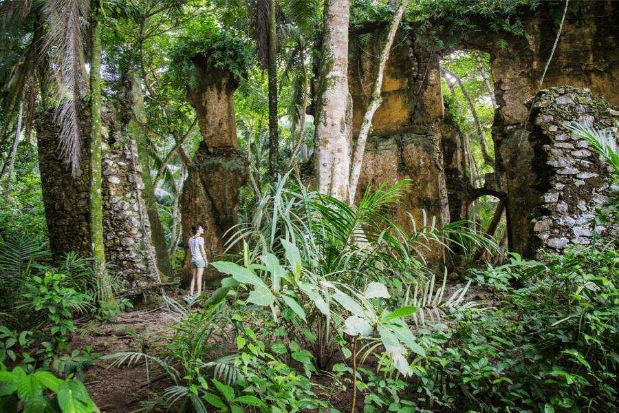 Jungle trekking, Sundy Praia, Principe | Go2Africa